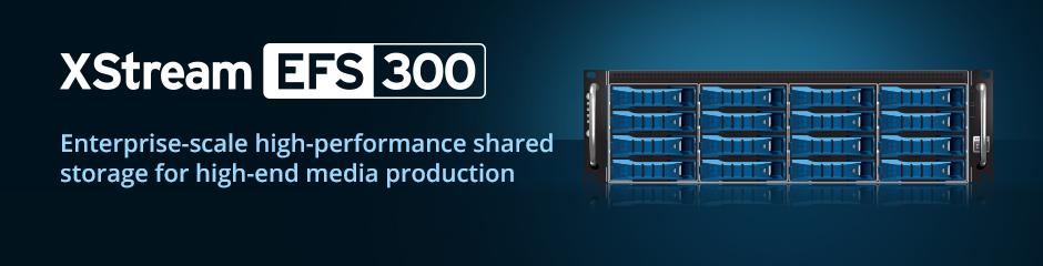 XStream EFS 300