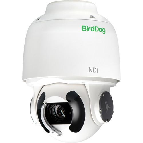 BirdDog HD PTZ BDA200